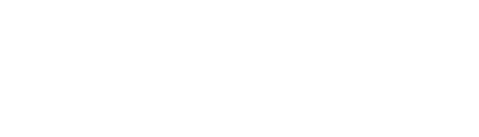 SkaleBid